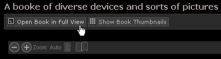 Screenshot of Luna BookReader: Open book in full view or Show book thumbnails