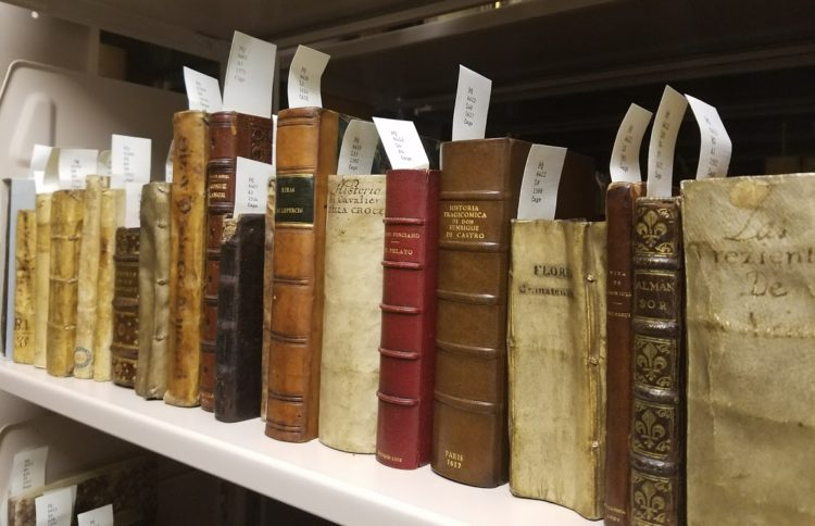 Photo of rare books on shelf